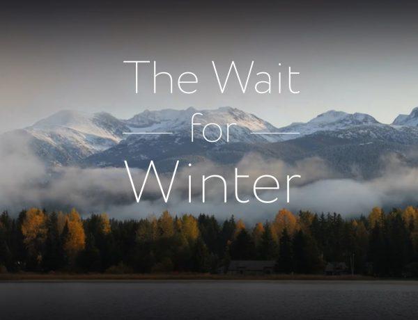 in asteptarea iernii