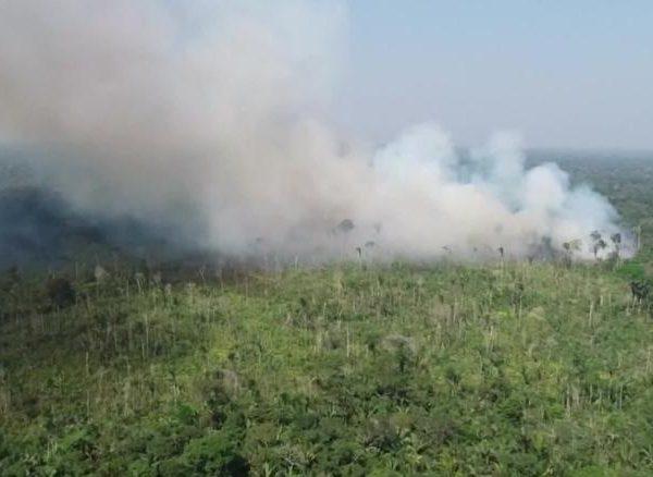 Presedintele Braziliei acuzat de catastrofa din Amazon - Partea a II-a
