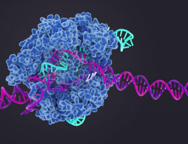 CRISPR - posibilitatea de a edita gene